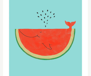 watermelon, whale, and funny image