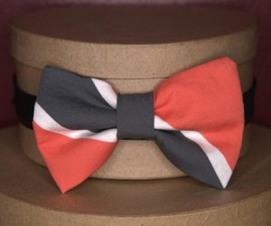 bow tie, carnival, and costume image