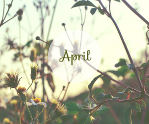 april, photography, and smile image