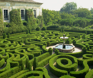 garden, maze, and travel image