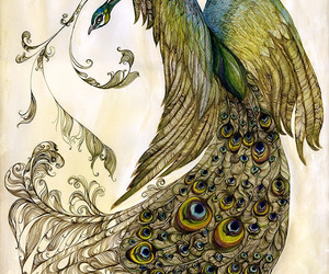 peacock, drawing, and sketch image