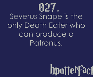 fact, harry potter, and hpfacts image