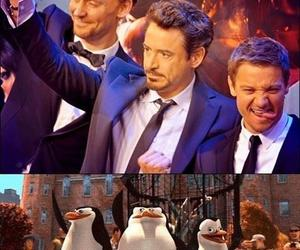 funny, Avengers, and madagascar image