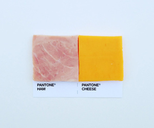 cheese, colors, and funny image
