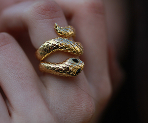 ring, snake, and gold image