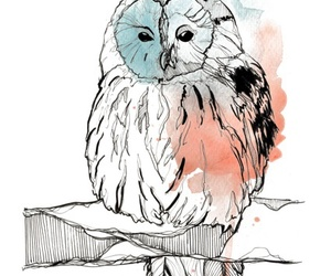 art, painting, and owl image