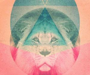 lion, hipster, and pink image