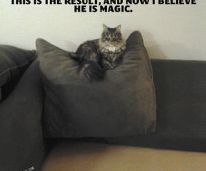 believe, he, and now image