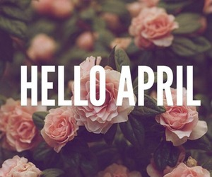april, hello, and flowers image