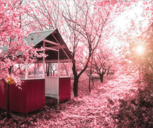 pink, tree, and house image