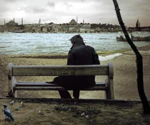alone, lake, and park image