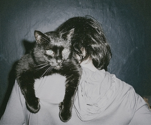 cat, girl, and Alice Glass image