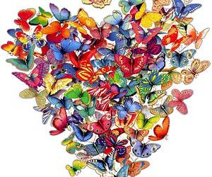 borboleta, butterfly, and coeur image