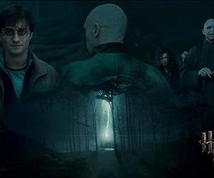 harry potter, cute, and love image