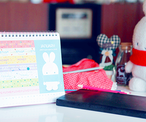 lifestyle, rabbit, and calendary image