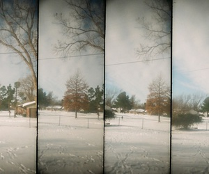 Film Photography and winter image