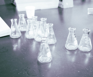 beakers and Film Photography image