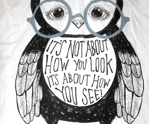 owl, quote, and look image