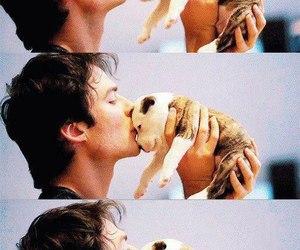 ian somerhalder, cute, and dog image