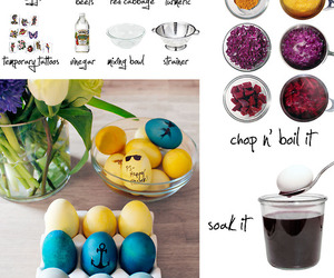 diy and eggs image