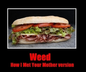 funny, how i met your mother, and weed image