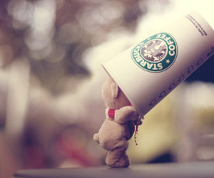 bear, kawaii, and starbucks image