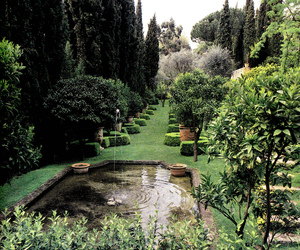 garden, beautiful, and fountain image