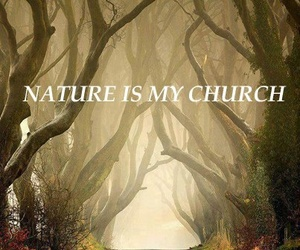 nature, pagan, and wicca image