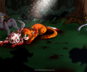 blood, cats, and death image