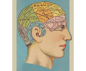 brain, poster, and psychology image