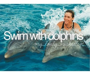 cool, dolphins, and edit image
