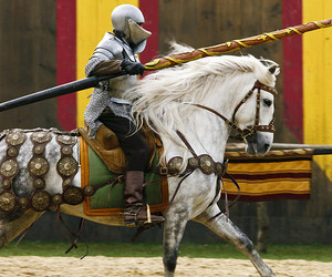 horse and jousting image