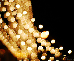 gold and lights image