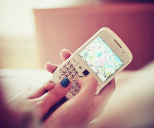 blackberry, phone, and white image