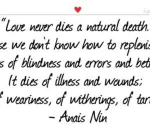 anais nin, quote, and text image