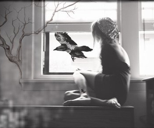 bird, black and white, and girl image