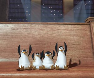 fool, funny, and pinguin image