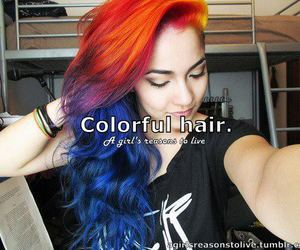 colorful hair, colors, and colours image