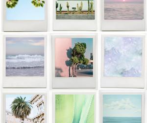 summer, polaroid, and beach image