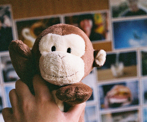 monkey, cute, and toys image