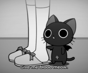 cat, blood, and meow image