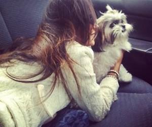 girl, dog, and brunette image