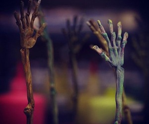 zombie and paranorman image