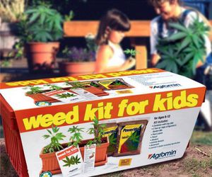 weed, kids, and kit image