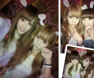 bunny, fashion, and girls image