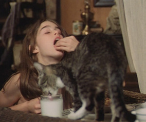 cat, pretty baby, and brooke shields image