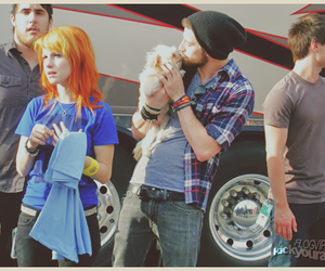paramore and jeremy davis image