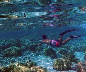 hawaii and sea image