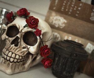 goth, skull, and rose image