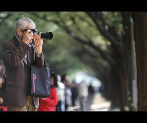 canon, coloredleaves, and 東京 image